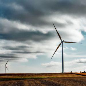 Nederlandse versie literatuurstudie gezondheidseffecten windturbines